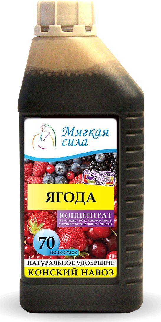Био удобрение Мягкая сила, для ягод, концентрат, 1 лMC-127Био удобрение Мягкая сила, получен методом аэробной ферментации конского навоза в био-реакторах, при термофильных (температурах 43-56 град. С) условиях сбраживания органического субстрата. Обладает полноценным комплексом питательных веществ и витаминов, специфической микрофлорой, способной подавлять развитие фито-патогенов. Используется в качестве многофункционального удобрения под все виды ягод, увеличивает зеленую массу, корнеобразование, стимулируя его иммунную систему, увеличивает урожай, улучшает вкусовые и питательные качества получаемой продукции.
