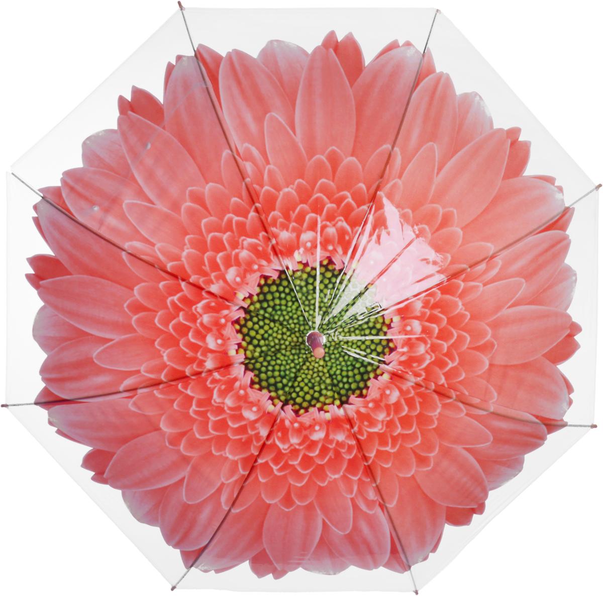Зонт женский Эврика Цветок, цвет: оранжевый, белый. 97858Колье (короткие одноярусные бусы)Зонт-трость полиэтиленовый, диаметр купола 1 метр, длинна трости 74 см.Упаковка: пакет прозрачный.