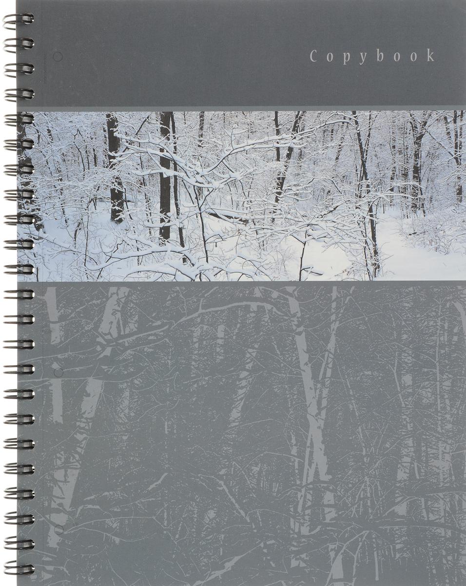 Полиграфика Тетрадь Панорама 120 листов в клетку цвет серый полиграфика тетрадь database 96 листов в клетку цвет черный оранжевый