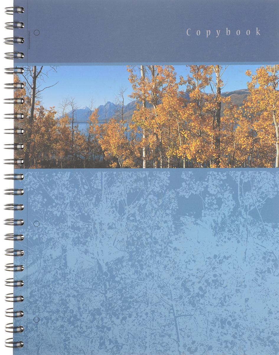 Полиграфика Тетрадь Панорама 120 листов в клетку цвет синий38009Тетрадь Полиграфика Панорама отлично подойдет для занятий студенту. Обложка тетради выполнена из плотного толстого картона, позволит сохранить тетрадь в аккуратном состоянии на протяжении всего времени использования. С обратной стороны обложки - календарь.Внутренний блок тетради, соединенный гребнем, состоит из 120 листов белой бумаги в голубую клетку с полями. Также внутренний блок тетради имеет перфорацию под папки формата А4.