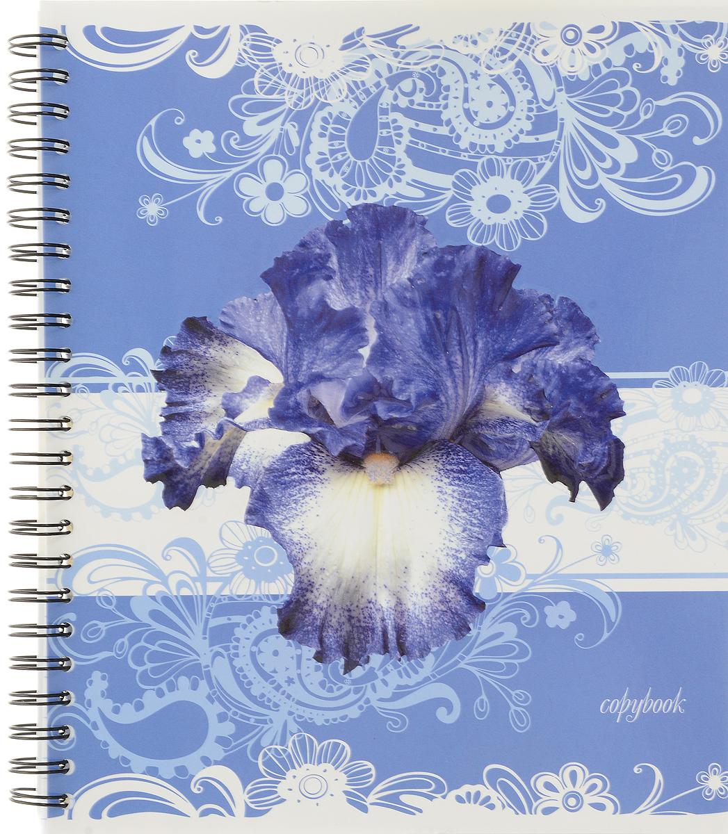 Полиграфика Тетрадь Цветы в узорах 96 листов в клетку цвет голубой72523WDТетрадь Полиграфика Цветы в узорах подойдет как школьнику, так и студенту.Обложка, выполненная из плотного картона, позволит сохранить тетрадь в аккуратном состоянии на протяжении всего времени использования. Обложка оформлена изображением объемных цветов.Внутренний блок тетради, соединенный металлическим гребнем, состоит из 96 листов белой бумаги в голубую клетку без полей.