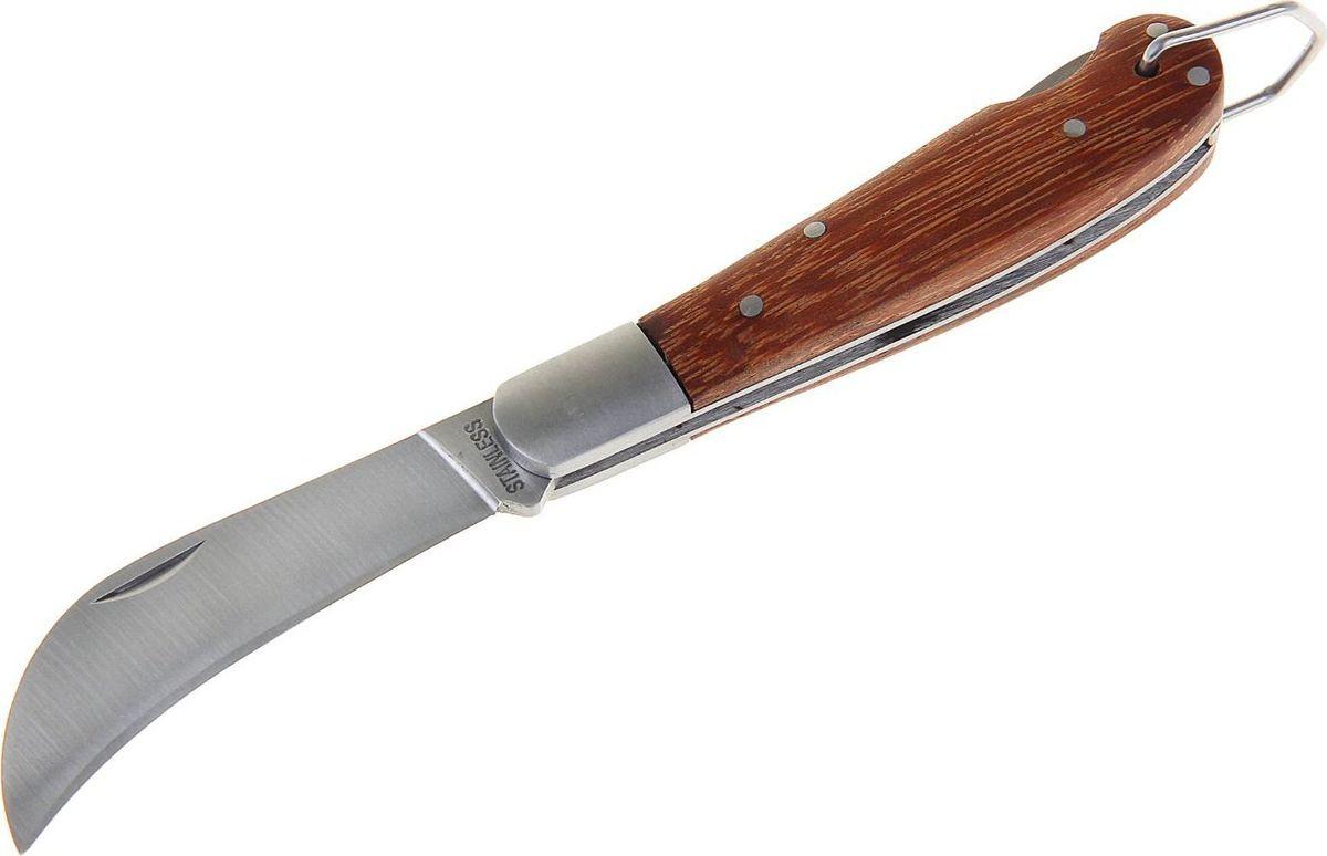 Нож перочинный, с фиксатором, 17,5 х 1,8 х 3 см. 11542091154209Раньше складные ножи были распространены среди матросов, потому что им был нужен надёжный и простой в использовании инструмент. Сейчас лезвие, которое можно обнажить одной рукой, стало помощником туристов, охотников или рыболовов.Нож складной неавтоматический с фиксатором, рукоять дерево с петелькой сделан из высококачественной стали, его механические части просты и не требуют обслуживания. Вы сможете привести нож из сложенного положения в рабочее за долю секунды. Острый клинок станет незаменимым инструментом в быту и на отдыхе.Как ухаживать за ножом:Удалите консервационную смазку, если она есть. Подойдут WD-40, растворители масла и грязи для велоцепей.Вытрите насухо и смажьте клинок. Заливать нож маслом необязательно, достаточно протереть его тряпкой с небольшим количеством растительного масла.Появившиеся веснушки ржавчины можно просто заполировать. Вам понадобится средство с абразивом для царапин, сукно и паста для тонкой полировки.Шарнир можно мыть водой или тем же WD-40. Главное — хорошо просушить подвижную часть феном и легко его смазать.Помните: хорошо вымытый после использования нож служит годами, не имеет резкого запаха и не ломается.