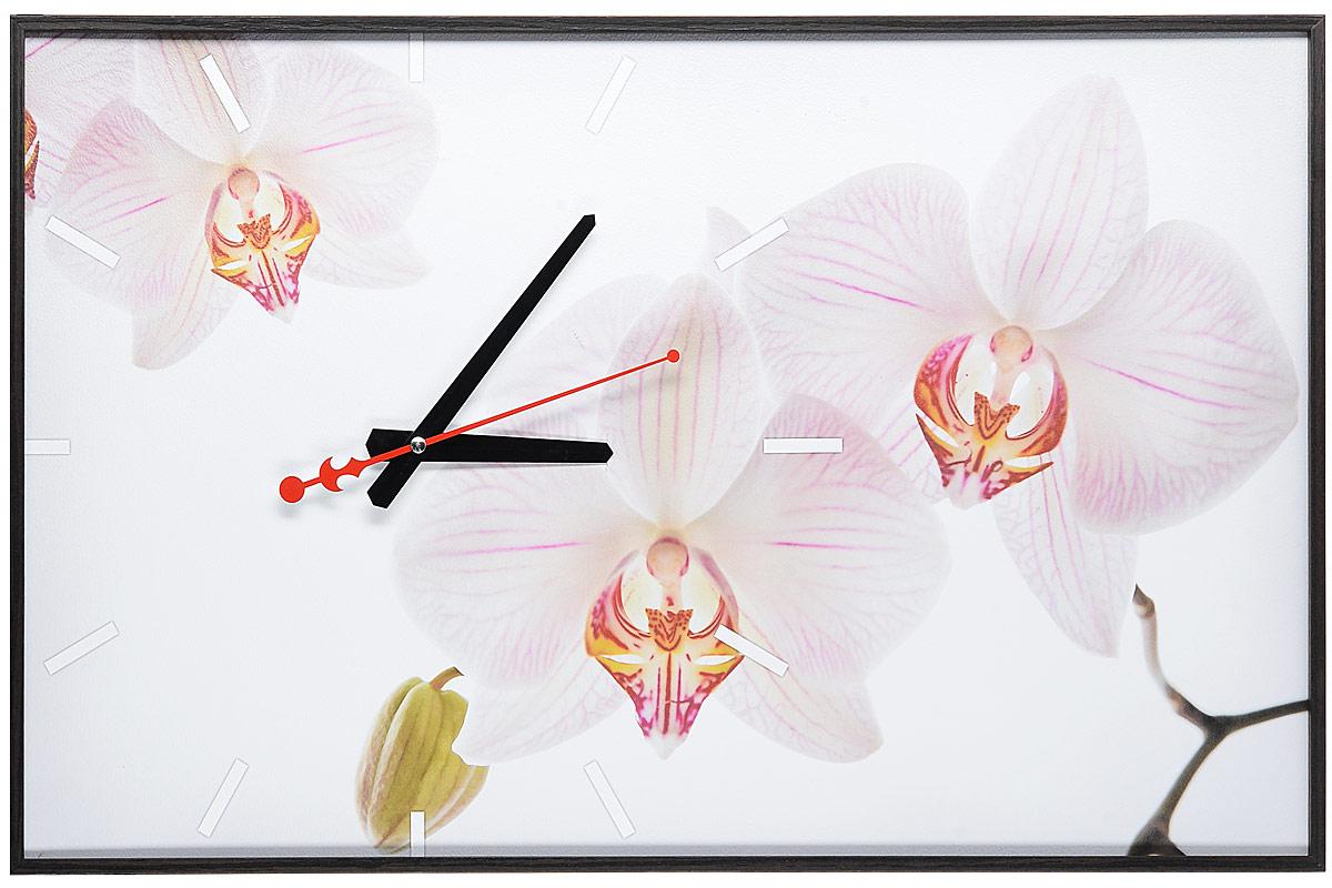 Часы-картина Toplight Цветы, 60 х 37 см. TL-C5019TL-C5019_коричневая рамкаНастенные часы-картина Toplight Цветы выполнены из бумаги и оргалита, рама из МДФ. Часы имеют кварцевый механизм с плавным, бесшумным ходом и три стрелки: часовую, минутную и секундную. Современные технологии и цифровая печать, используемые в производстве, делают постер устойчивым к выцветанию и обеспечивают исключительное качество произведений. Благодаря наличию необходимых креплений в комплекте установка не займет много времени.Часы-картина Toplight - это прекрасная возможность создать яркий акцент при оформлении любого помещения.Правила ухода: можно протирать сухой, мягкой тканью. Часы работают от 1 батарейки типа АА (не входит в комплект).