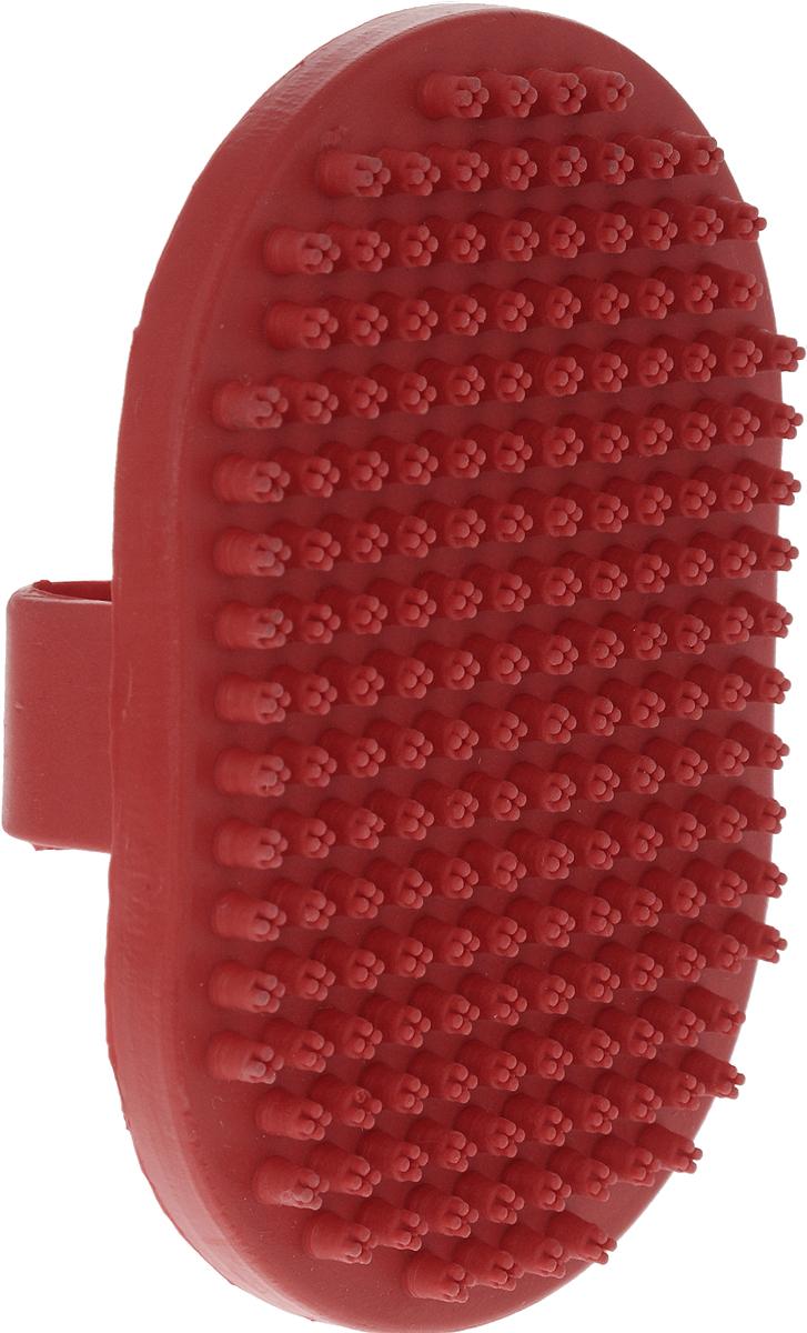 Щетка для собак Nobby, цвет: красный, 13 х 9 см. 7264072640_красныйЩетка для собак Nobby предназначена для собак. Специальная овальная форма щетки облегчает использование ее в домашних условиях на густых и жестких волосах животных. Концы резиновых щетинок с четырьмя зубцами позволяют удалять мертвые волосы на теле животного, а также пыль и грязь. Идеально использовать для мытья собаки. Размер щетки: 13 х 9 см.Высота с учетом ручки: 3 см
