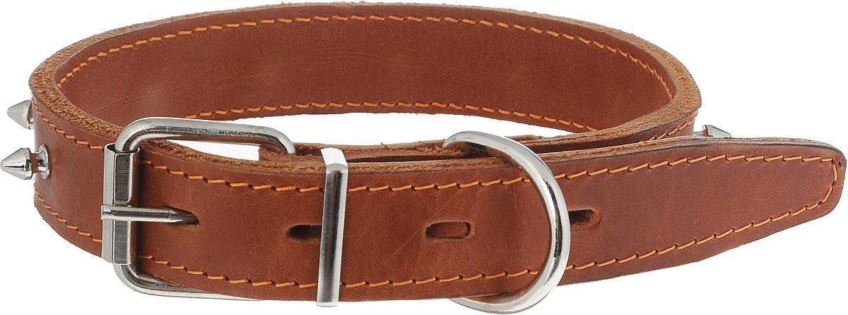 Ошейник с шипами двойной, цвет: светло-коричневый, ширина 3 см, диаметр 44-53 см, - Товары для прогулки и дрессировки (амуниция)