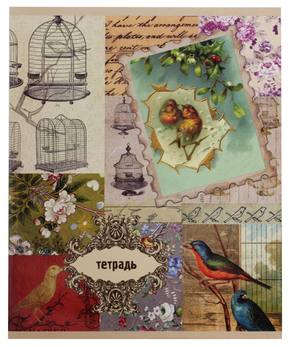 Феникс+ Тетрадь Коллаж 48 листов в клетку тетрадь seventeen 48 листов формат а5 цвет бирюзовый фиолетовый