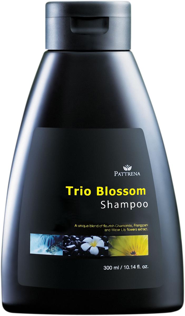 Pattrena шампунь Трио цветов, 300 млMP59.4DОбогащенный, лечебный шампунь с экстрактом ромашки, экстрактом цветков лилии, экстракт Плюмерии. Содержит формулу мягкого увлажнения и очищения волос. Обладает освежающим цветочным ароматом чувственной Плюмерии. Подходит для нормальных и жирных волос.