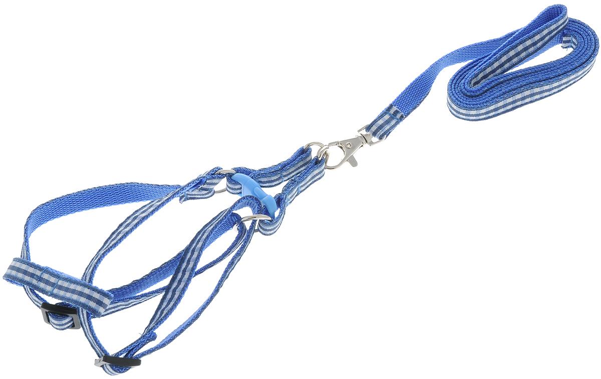 Комплект для собак GLG Клетка: шлейка, поводок, цвет: синий, белый, 2 предметаOH06_синийКомплект для собак GLG Клетка состоит из шлейки и поводка. Изделия выполнены из высококачественного нейлона с принтом в клетку. Крепкие металлические и пластиковые элементы делают шлейку надежной и долговечной. Размер шлейки можно регулировать. Поводок на карабине с легкостью отстегивается. Комплект предназначен для собак мелких пород.Шлейка - это альтернатива ошейнику. Правильно подобранная шлейка не стесняет движения питомца, не натирает кожу, поэтому животное чувствует себя в ней уверенно и комфортно. Поводок - необходимый аксессуар для собаки. Ведь в опасных ситуациях именно он способен спасти жизнь вашему любимому питомцу.Ширина ленты шлейки: 1 см.Длина поводка: 1,2 м.