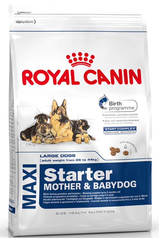 Корм сухой Royal Canin Maxi Starter, для щенков крупных размеров в период отъема до 2-месячного возраста, для собак в последней трети беременности и во время лактации, 15 кг38799Корм сухой Royal Canin Maxi Starter для щенков крупных размеров в период отъема до 2-месячного возраста, для собак в последней трети беременности и во время лактации.Корм Maxi Starter - это эксклюзивная комбинация питательных веществ, имеющихся в молоке матери, усиленная дополнительными веществами, которые активно способствуют безопасности пищеварения и укрепляют естественный иммунитет щенков. Диетологическое решение, адаптированное к высоким потребностям суки в конце периода беременности и во время лактации.Диетологическое решение, которое облегчает перевод щенка с молока матери на твердый корм (энергетическая ценность, качество белка, жиры).Крокеты легко размачиваются до консистенции каши и обладают высокой вкусовой привлекательностью для суки и щенков в период отъема.Состав: рис, дегидратированное мясо птицы, животные жиры, изолят растительных белков*, гидролизат белков животного происхождения, кукуруза, свекольный жом, минеральные вещества, соевое масло, растительная клетчатка, рыбий жир, соль жирной кислоты, фруктоолигосахариды, оболочка и семена подорожника, гидролизат дрожжей (источник мaннановых олигосахаридов и бета-глюканов), экстракт бархатцев прямостоячих (источник лютеина).Добавки (в 1 кг) - компоненты, вносимые в процессе производства: витамин A: 13900 ME, витамин D3: 1200 ME, бета-каротин: 40 мг, железо: 48 мг, йод: 3,7 мг, марганец: 63 мг, цинк: 206 мг, сeлeн: 0,08 мг.