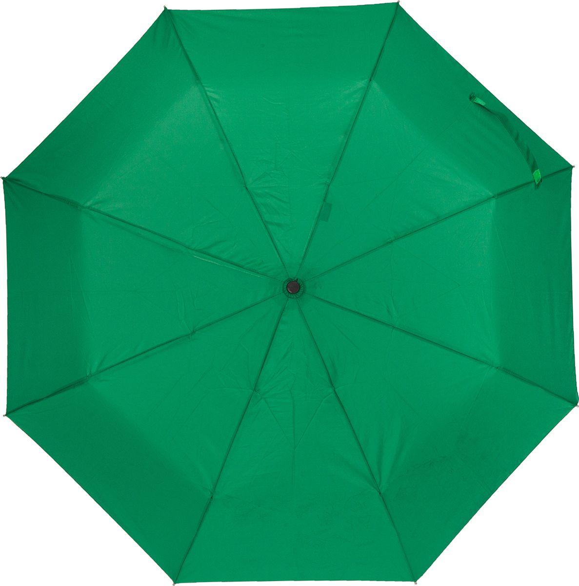 Зонт женский Labbra, цвет: зеленый. A3-05-LT200Бусы-ошейникЖенский зонт-автомат торговой марки LABBRA с проявляющимся рисунком. Изображение на зонте начинает проявляться, как только ткань купола намокает, при высыхании рисунок тускнеет и исчезает. Купол: 100% полиэстер, эпонж. Материал каркаса: сталь + алюминий + фибергласс. Материал ручки: пластик. Длина изделия - 29 см. Диаметр купола - 105 см.