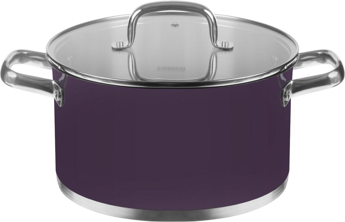 Кастрюля Esprado Uva Norte с крышкой, цвет: фиолетовый, 5,7 лUVNL24AE101Кастрюля Esprado Uva Norte, изготовленная из высококачественной нержавеющей стали с внешним цветным покрытием, имеет трехслойное теплоаккумулирующее дно. Внешнее покрытие не только эстетично, но и функционально: входящие в его состав частицы песка обеспечивают равномерное распределение жара и ускоряют процесс приготовления блюда. Внутри - матовая полировка с отметками литража для точного соблюдения рецепта. Особая конструкция дна способствует высокой теплопроводности и равномерному распределению тепла. Материал удерживает тепло по всей поверхности изделия, благодаря чему пища равномерно и быстро нагревается. Кастрюля оснащена двумя удобными стальными ручками. Крышка, выполненная из термостойкого стекла, позволит вам следить за процессом приготовления пищи. Крышка оснащена металлическим ободом и отверстием для выпуска пара. Кастрюля идеальна для приготовления здоровой пищи с минимальным количеством жира, что обеспечивает снижение потери полезных витаминов, минеральных веществ и сохраняет аромат приготовляемых блюд. Кастрюлю можно использовать на любых видах плит, включая индукционные. Нельзя мыть в посудомоечной машине.Диаметр кастрюли (по верхнему краю): 24 см.Высота стенок кастрюли: 13,5 см.