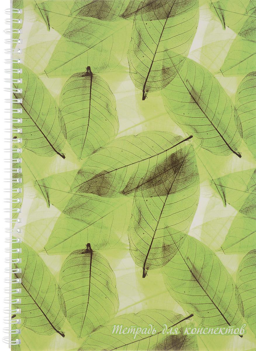 Фолиант Тетрадь для конспектов 80 листов в клетку ТДК-3 -  Тетради