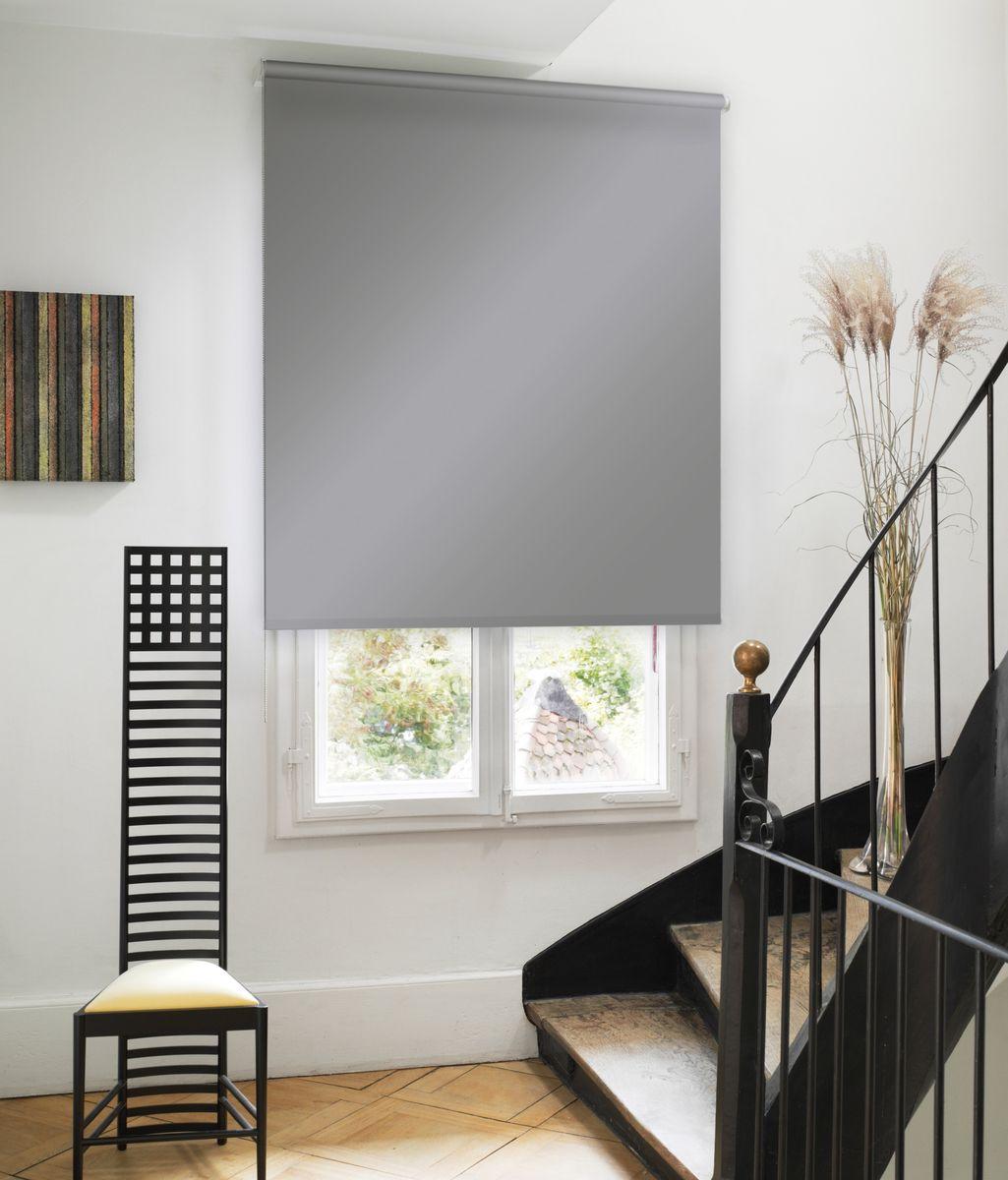 Штора рулонная Эскар Миниролло, цвет: серый, ширина 90 см, высота 170 см31020090170Рулонными шторами можно оформлять окна как самостоятельно, так и использовать в комбинации с портьерами. Это поможет предотвратить выгорание дорогой ткани на солнце и соединит функционал рулонных с красотой навесных. Преимущества применения рулонных штор для пластиковых окон: - имеют прекрасный внешний вид: многообразие и фактурность материала изделия отлично смотрятся в любом интерьере;- многофункциональны: есть возможность подобрать шторы способные эффективно защитить комнату от солнца, при этом она не будет слишком темной. - Есть возможность осуществить быстрый монтаж.ВНИМАНИЕ! Размеры ширины изделия указаны по ширине ткани! Во время эксплуатации не рекомендуется полностью разматывать рулон, чтобы не оторвать ткань от намоточного вала. В случае загрязнения поверхности ткани, чистку шторы проводят одним из способов, в зависимости от типа загрязнения:легкое поверхностное загрязнение можно удалить при помощи канцелярского ластика;чистка от пыли производится сухим методом при помощи пылесоса с мягкой щеткой-насадкой;для удаления пятна используйте мягкую губку с пенообразующим неагрессивным моющим средством или пятновыводитель на натуральной основе (нельзя применять растворители).