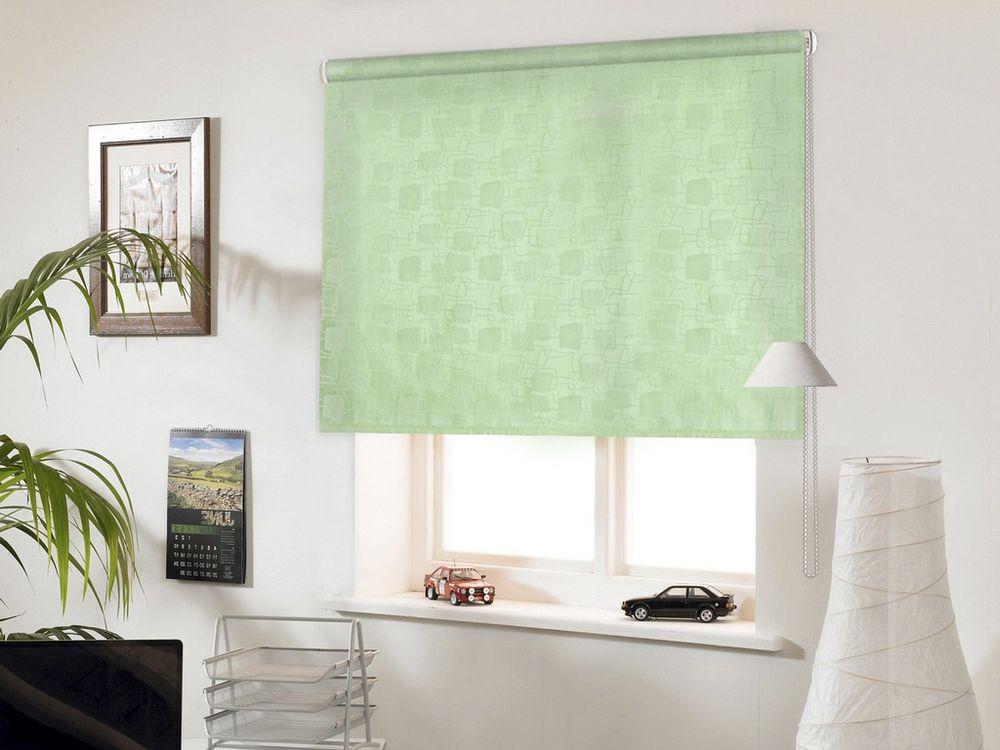 Штора рулонная Эскар  Миниролло. Эдем , цвет: светло-зеленый, ширина 98 см, высота 160 см - Шторы