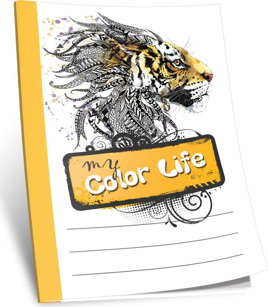 Попурри Блокнот My Color Life 40 листов без разметки цвет белый4810764002167Ребенок вы или взрослый, мужчина или женщина, художник или студент — эти блокноты прекрасно подойдут для зарисовок, записикреативных идей, мыслей или любых других заметок. Они сделаны из практичной офсетной бумаги, на которой приятно как писать, так и рисовать, а удобный формат позволяет их брать куда угодно. Каждый блокнот имеет индивидуальную упаковку из прозрачного полиэтилена. Они станут отличным приобретением для всех, кто привык на ходу фиксировать информацию, писать и рисовать.