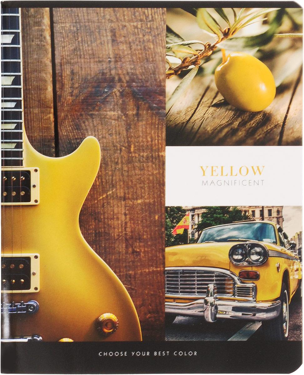 Greenwich Line Тетрадь Magnificent Colors Yellow 48 листов в клеткуN5c48-12893_YellowТетрадь общая Greenwich Line Magnificent Colors Yellow отлично подойдет для занятий как школьнику, так и студенту. Обложка изготовлена из импортного целлюлозного мелованного картона с двусторонней запечаткой, отделка обложки - матовая ламинация, выборочное глянцевое УФ-лакирование.Внутренний блок тетради, соединенный скрепками, состоит из 48 листов белой бумаги в голубую клетку с полями.