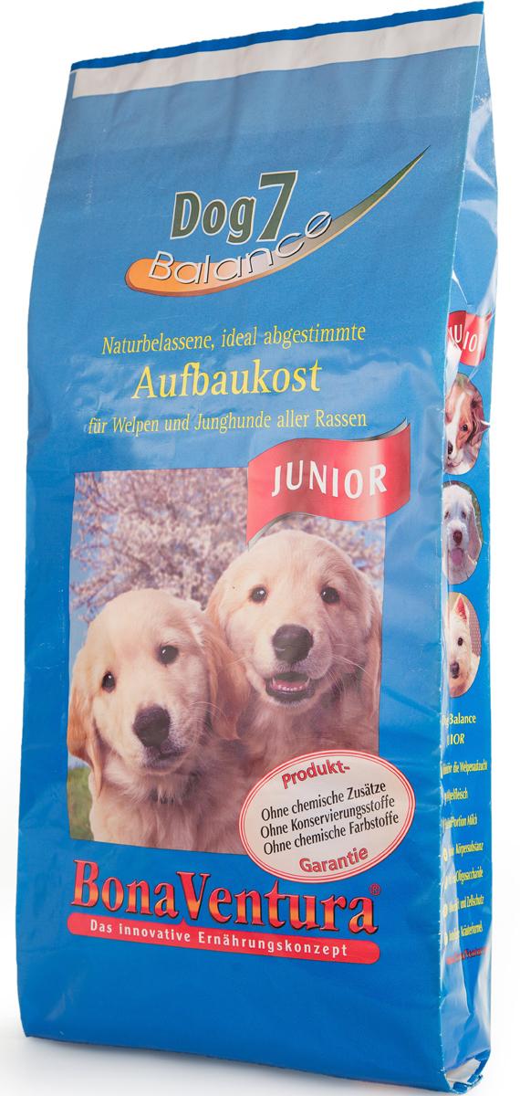 Корм сухой BonaVentura Dog 7 Junior для щенков и молодых собак, 12,5 кг205512Корм сухой BonaVentura Dog 7 Junior - натуральный высокопитательный корм, который гарантирует здоровый рост щенков и молодых собак всех пород. Благодаря легкоусвояемым и ценным ингредиентам, этот корм также оптимально подходит для беременных и кормящих собак. Корм содержит разные виды мяса, необходимого для нормального роста и развития вашего щенка.Корм произведен в Германии из продуктов, пригодных в пищу человека, по специальной технологии, схожей с технологией Sous Vide. При изготовлении сохраняются все натуральные витамины и минералы. Это достигается благодаря бережной обработке всех ингредиентов при температуре менее 80°С. Такая бережная обработка продуктов не стерилизует продуктовые компоненты. Благодаря этому корма не нуждаются ни в каких дополнительных вкусовых добавках и сохраняют все необходимые полезные вещества. Особенности:- При производстве кормов используются исключительно свежие натуральные продукты: мясо, овощи и зерновые; - Приготовлено из 100% свежего мяса, пригодного в пищу человеку; - Содержит натуральные витамины, аминокислоты, минеральные вещества и микроэлементы; - С экстрактом масла зародышей зерна пшеницы холодного отжима (Bio-Dura); - Без химических красителей, усилителей вкуса, искусственных консервантов и химических добавок; - Без ГМО; - Без мясокостной муки; - Без сои.Состав: свежее мясо, печень, сердце говядины, утки и индейки 55%, цельные зерна пшеницы, овса, ячменя и риса 15%, говяжий жир, овощи (морковь и лук-порей) 10%, молоко, смесь трав (корень гапрафумина, одуванчик, эхинацея пкрпкрная, хвощ лесной, листья окопника, огуречник), экстракт зародышей пшеницы холодного отжима, пивные дрожжи, фруктоолигосахариды, лецитин из цельного яйца, витамины и минералы. Пищевая ценность: Белки 30,0%, Жиры 8,7%, Клетчатка 3,6%, Зола 3,5%, Влажность 9,0%, Кальций 1,2%, Фосфор 0,9%, Витамин B1 5,1 мг/кг, Витамин B6 3,9 мг/кг, Витамин B12 30 мкг/кг, Биотин 250 мкг/кг, Железо
