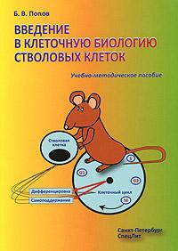 Введение в клеточную биологию стволовых клеток