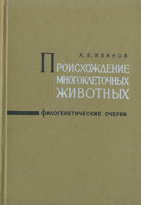 А. В. Иванов