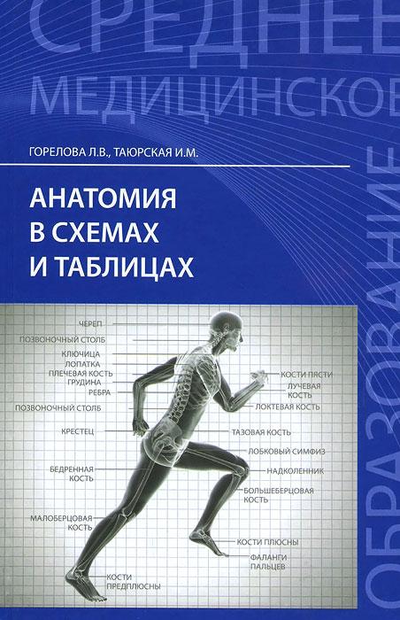 Анатомия в схемах и таблицах. Учебное пособие