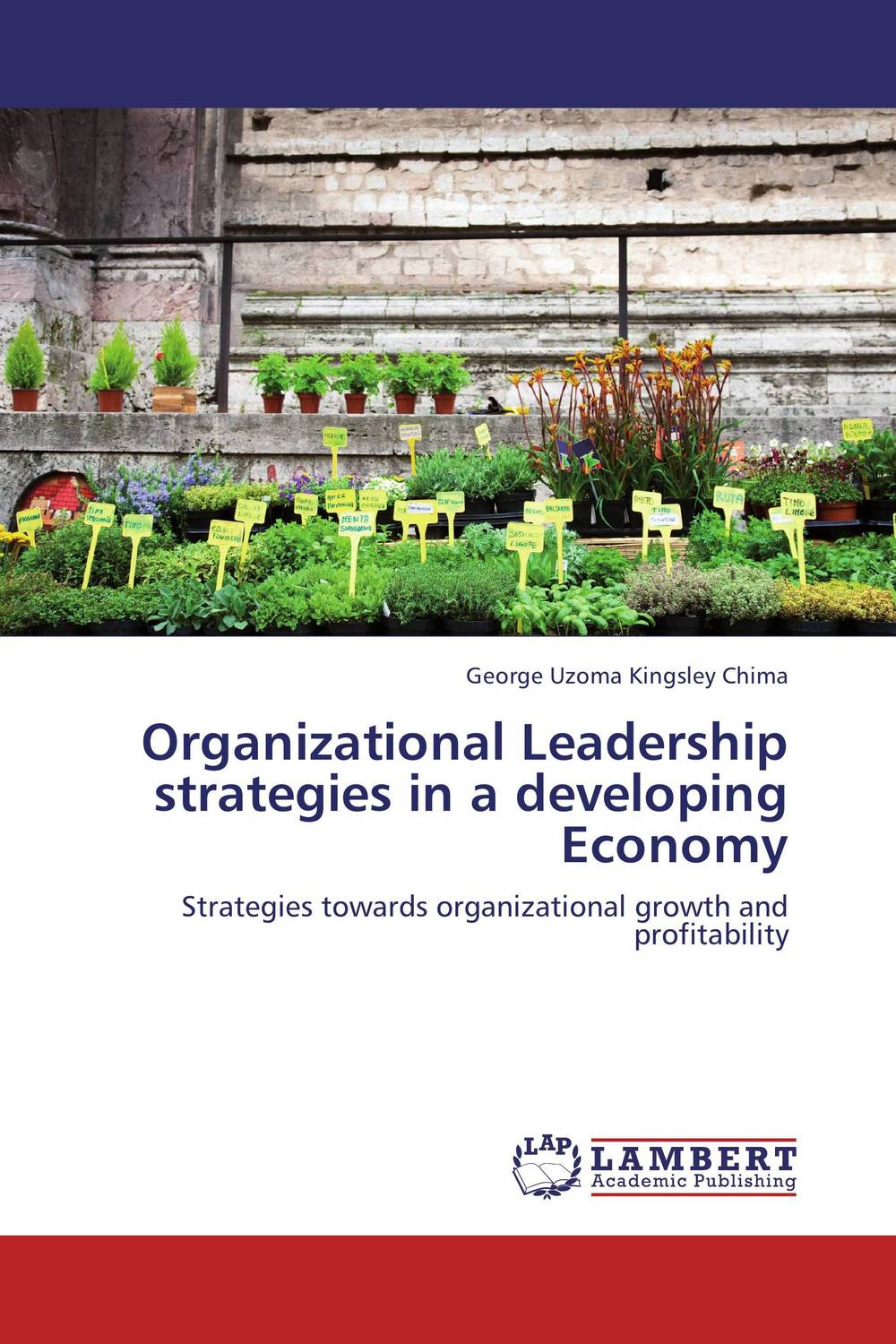 Organizational Leadership strategies in a developing Economy leadership effectiveness in organizational settings