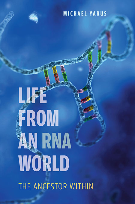 Life from an RNA World – The Ancestor Within scenes from provincial life