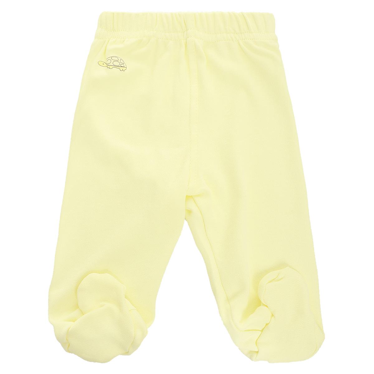 Ползунки Клякса, цвет: светло-желтый. 37-561. Размер 62, до 3 месяцев37-561Ползунки для новорожденного Клякса послужат идеальным дополнением к гардеробу вашего младенца, обеспечивая ему наибольший комфорт.Модель, изготовленная из интерлока - натурального хлопка, необычайно мягкая и легкая, не раздражает нежную кожу ребенка и хорошо вентилируется, а эластичные швы приятны телу новорожденного и не препятствуют его движениям. Ползунки с закрытыми ножками благодаря мягкому эластичному поясу не сдавливают животик младенца и не сползают, идеально подходят для ношения с подгузником. Спереди изделие оформлено оригинальным принтом в виде небольшого изображения животного. Они полностью соответствуют особенностям жизни ребенка в ранний период, не стесняя и не ограничивая его в движениях. УВАЖАЕМЫЕ КЛИЕНТЫ! Обращаем ваше внимание на возможные незначительные изменения в дизайне: рисунок животного может отличатся от рисунка, изображенного на фотографии.