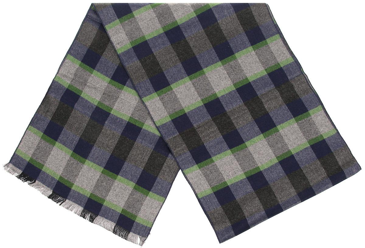 Шарф мужской Labbra, цвет: темно-синий, серый, зеленый. LJG34-347-12. Размер 30 см х 180 смLJG34-347-12Мужской шарф Labbra, выполненный из шелка и вискозы, отлично подойдет для повседневной носки. Материал шарфа очень мягкий и приятный на ощупь. Модель оформлена принтом в клетку, по краям декорирована бахромой.Современный дизайн и расцветка делают этот шарф модным и стильным мужским аксессуаром. Он подарит вам ощущение комфорта и уюта.