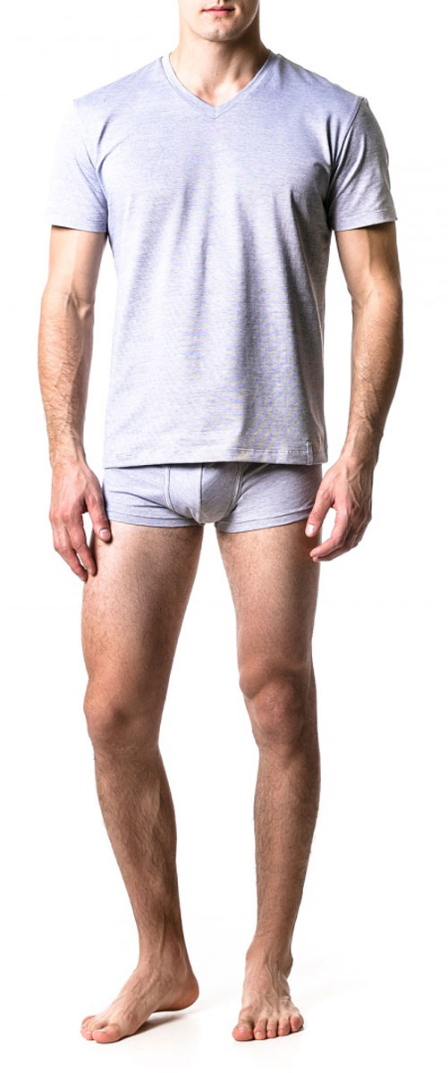 Футболка мужская Ardi, цвет: серый меланж. R2541-95. Размер 46R2541-95Мужская футболка Ardi, выполненная из высококачественного комбинированного материала, необычайно мягкая приятная на ощупь, не сковывает движения, обеспечивая наибольший комфорт. Модель свободного кроя с V-образным вырезом горловины и короткими рукавами. Спереди по низу сбоку имеется хлопковая тесьма с логотипом бренда.