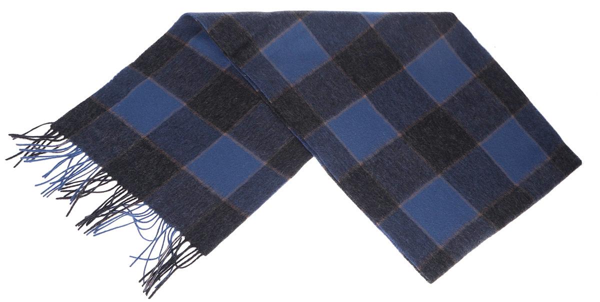 Шарф мужской Paccia, цвет: синий, темно-серый. TH-21523-3. Размер 30 см x 165 смTH-21523-3Стильный шарф Paccia согреет вас в прохладную погоду и станет отличным завершением вашего образа. Шарф с рисунком в крупную клетку изготовлен из натуральной шерсти. Материал мягкий и приятный на ощупь, хорошо драпируется. Края шарфа декорированы кисточками, скрученными в жгутики.Этот модный аксессуар гармонично дополнит любой наряд и подчеркнет ваш изысканный вкус.