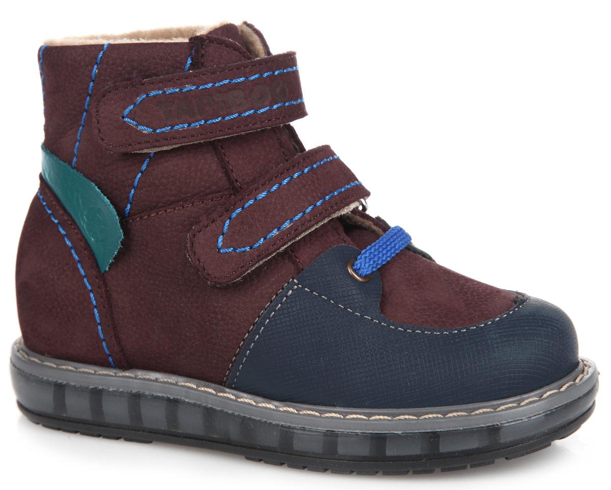 Ботинки для мальчика TapiBoo, цвет: бордовый, темно-синий. FT003.15-OL06O.02. Размер 28FT-23003.15-OL06O.02Стильные детские ботинки TapiBoo приведут в восторг вашего малыша. Модель выполнена из комбинации натурального нубука и натуральной кожи и оформлена прострочкой по верху. Подкладка и стелька, изготовленные из мягкого и утепленного синтетического волокна, согреют ножки ребенка от холода и обеспечат уют. Ремешки на застежках-липучках позволяют оптимально подогнать полноту обуви по ноге и гарантируют надежную фиксацию. Подъем дополнен декоративным шнурком и металлическими люверсами. Жесткий фиксирующий задник с удлиненным крылом стабилизирует голеностопный сустав во время ходьбы. Задник декорирован вставкой из натуральной кожи контрастного цвета с символикой бренда. Упругая, умеренно-эластичная подошва, имеющая перекат, который позволяет повторить естественное движение стопы при ходьбе, предназначена для правильного распределения нагрузки на опорно-двигательный аппарат ребенка. Удобные ботинки придутся по душе вашему ребенку!