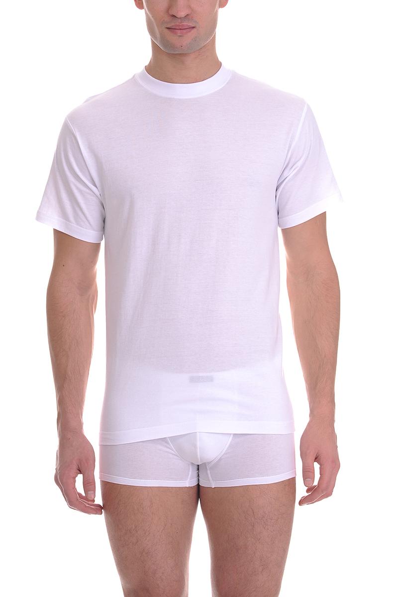 Футболка мужская Torro, цвет: белый. TMF835R. Размер XXXL-B (56B)TMF835RМужская футболка Torro, изготовленная из натурального хлопка,мягкая и приятная на ощупь, не сковывает движения, обеспечивая наибольшийкомфорт.Модель с короткими рукавами и круглым вырезом горловины.Эта футболка - практичная вещь, которая, несомненно, впишется в ваш гардероб, вней вы будете чувствовать себя уютно и комфортно.