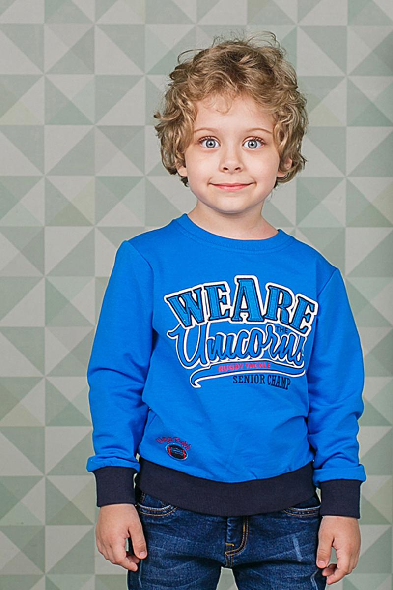 Толстовка для мальчика Sweet Berry, цвет: синий. 206354. Размер 104206354Стильная толстовка для мальчика выполнена из мягкого трикотажного материала. Воротник, манжеты рукавов и низ изделия выполнены из трикотажной резинки.