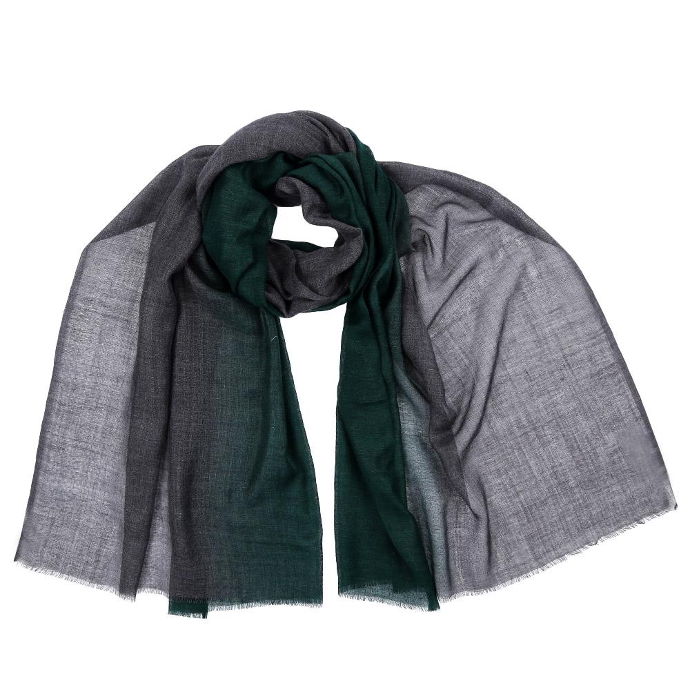 Шарф женский Leo Ventoni, цвет: зеленый. AA-5536. Размер 70 см х 180 смAA-5536-GreenСтильный шарф поможет внести живость в любой образ, подарит уют и согреет от холодного ветра. Выполнен из высококачественного материала и оформлен оригинальным принтом.
