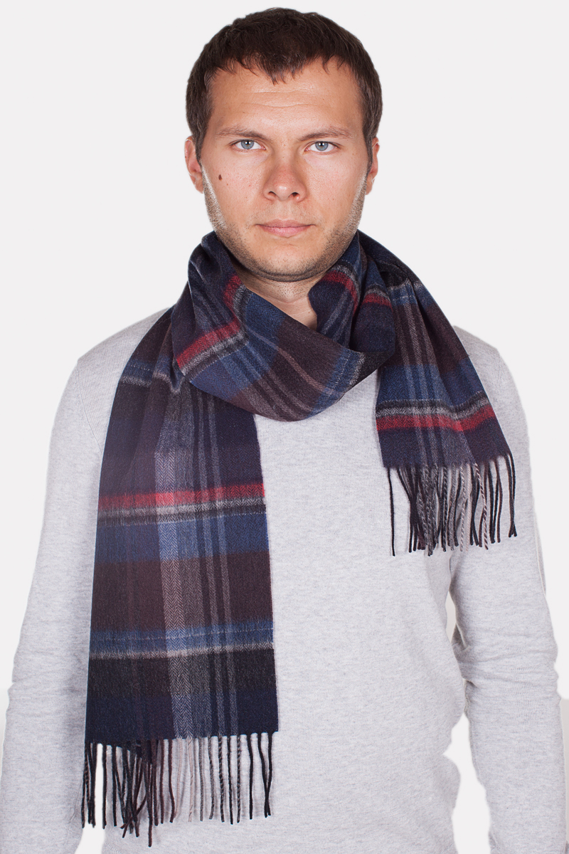 Шарф мужской Paccia, цвет: темно-синий, красный. TH-21506-3. Размер 90 см х 180 смTH-21506-3Стильный шарф Paccia согреет вас в прохладную погоду и станет отличным завершением вашего образа. Шарф изготовлен из натуральной шерсти и оформлен вязкой клетка. Материал мягкий и приятный на ощупь, хорошо драпируется. По краям модель дополнена кистями бахромы.Этот модный аксессуар гармонично дополнит любой наряд и подчеркнет ваш изысканный вкус.
