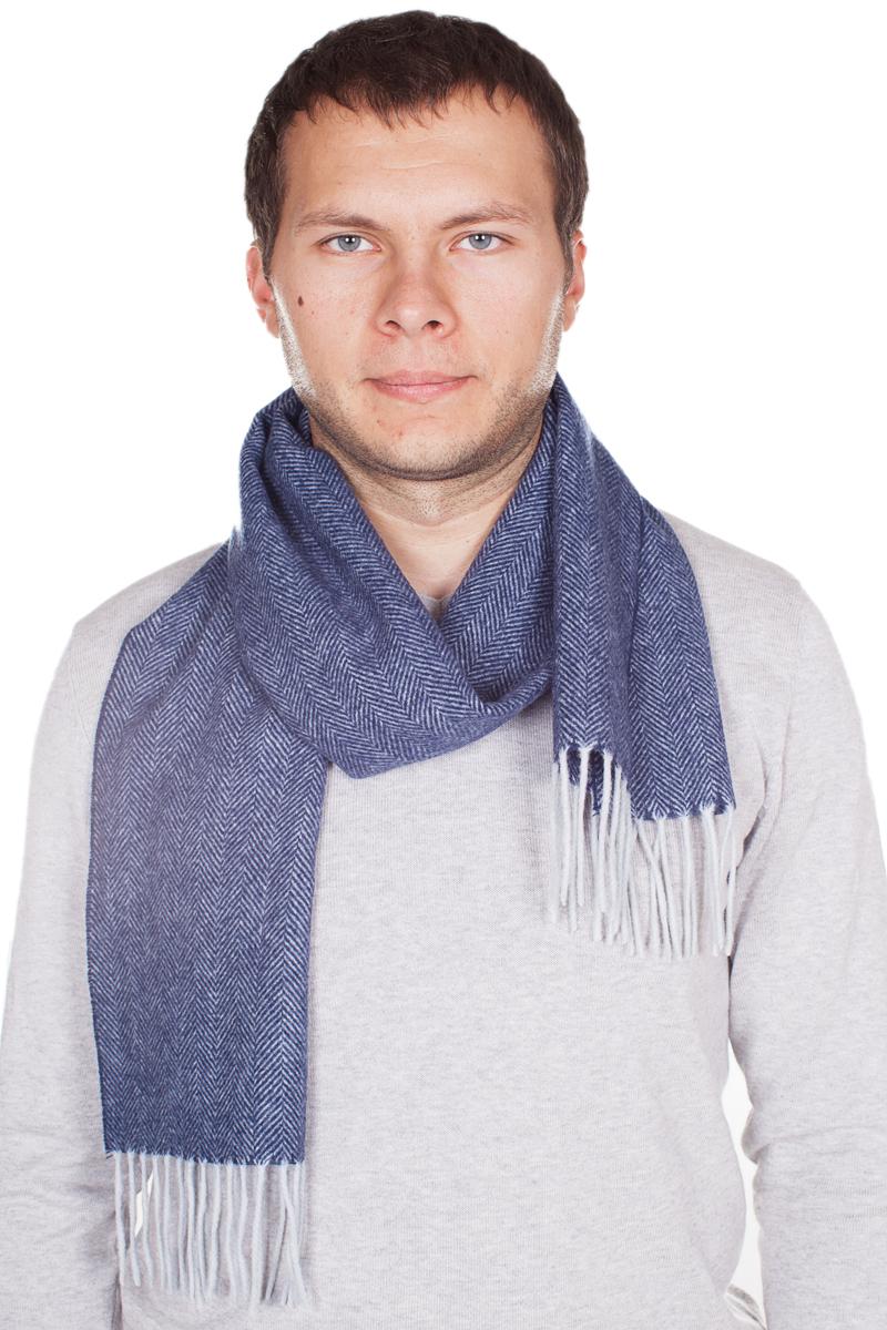 Шарф мужской Paccia, цвет: синий, белый. TH-21508-3. Размер 30 см х 165 смTH-21508-3Стильный шарф Paccia согреет вас в прохладную погоду и станет отличным завершением вашего образа. Шарф изготовлен из натуральной шерсти, а по краям дополнен кистями бахромы. Материал мягкий и приятный на ощупь, хорошо драпируется. Этот модный аксессуар гармонично дополнит любой наряд и подчеркнет ваш изысканный вкус.