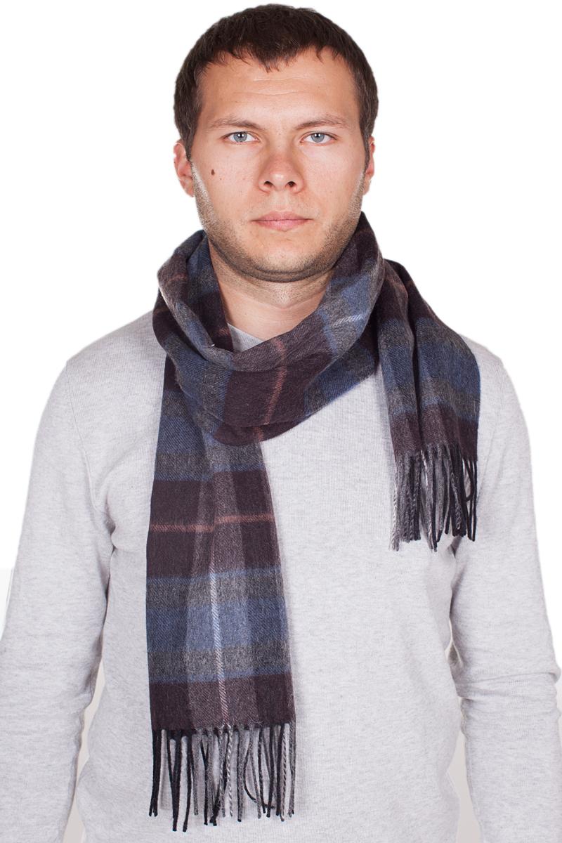 Шарф мужской Paccia, цвет: темно-коричневый, синий. TH-21510-5. Размер 100 см х 180 смTH-21510-5Стильный шарф Paccia согреет вас в прохладную погоду и станет отличным завершением вашего образа. Шарф изготовлен из натуральной шерсти и оформлен вязкой клетка. Материал мягкий и приятный на ощупь, хорошо драпируется. По краям модель дополнена кистями бахромы.Этот модный аксессуар гармонично дополнит любой наряд и подчеркнет ваш изысканный вкус.