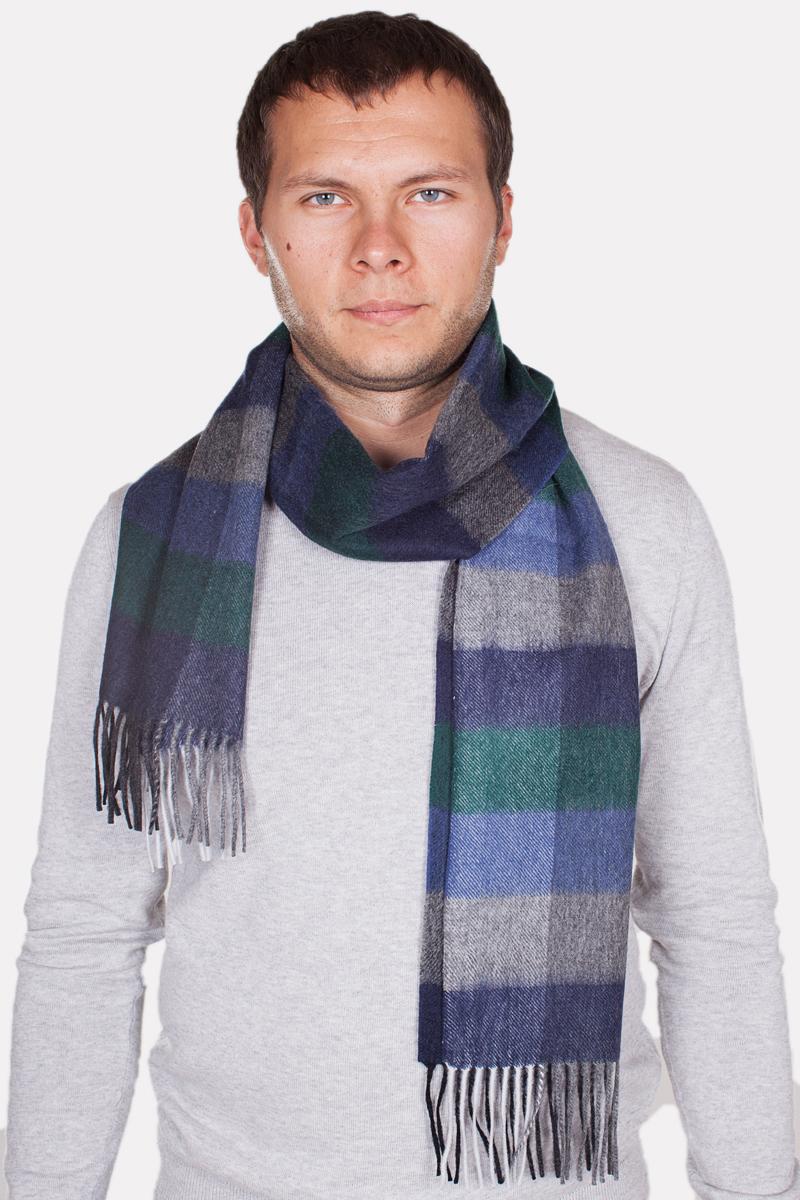 Шарф мужской Paccia, цвет: синий, зеленый, серый. TH-21509-3. Размер 80 см х 180 смTH-21509-3Стильный шарф Paccia согреет вас в прохладную погоду и станет отличным завершением вашего образа. Шарф изготовлен из натуральной шерсти и оформлен вязкой клетка. Материал мягкий и приятный на ощупь, хорошо драпируется. По краям модель дополнена кистями бахромы.Этот модный аксессуар гармонично дополнит любой наряд и подчеркнет ваш изысканный вкус.