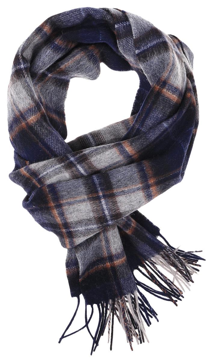 Шарф мужской Paccia, цвет: темно-синий, серый. TH-21505-3. Размер 30 см х 160 смTH-21505-3Теплый мужской шарф Paccia станет достойным завершением вашего образа.Шарф изготовлен из высококачественной шерсти. Модель оформлена оригинальным принтом в клетку. По краям изделие дополнено бахромой.