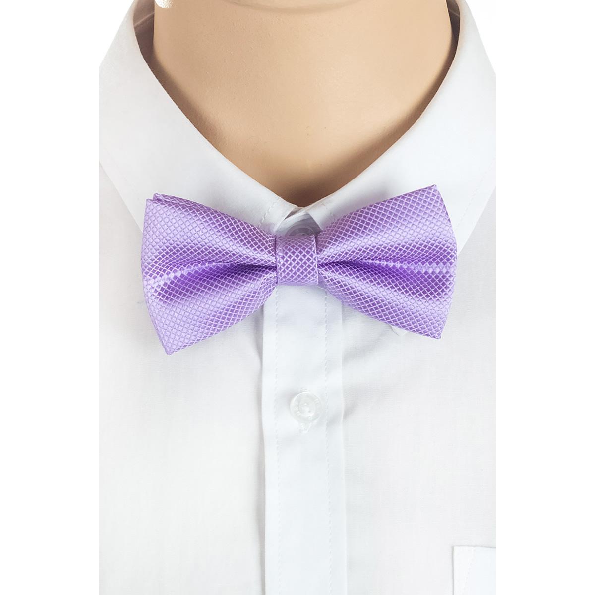 Галстук-бабочка для мальчика Brostem, цвет: сиреневый. BBAB53-53. Размер универсальныйBBAB53-53Модный галстук-бабочка для мальчика Brostem изготовлен из полиэстера. Галстук-бабочка дополнен регулируемой лентой с пластиковой застежкой-защелкой.