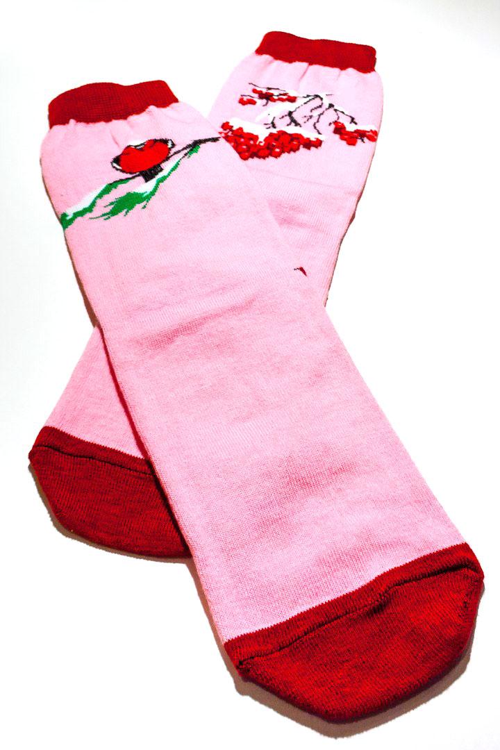 Носки женские Big Bang Socks Снегирь и рябина, махровые, цвет: розовый, красный. fs5123. Размер 35/39fs5123Махровые женский носки Big Bang Socks Снегирь и рябина изготовлены из высококачественного хлопка с добавлением полиамидных и эластановых волокон, которые обеспечивают великолепную посадку.Удобная резинка идеально облегает ногу и не пережимает сосуды, а удлиненный паголенок придает более эстетичный вид. Носки оформлены красочным принтом.