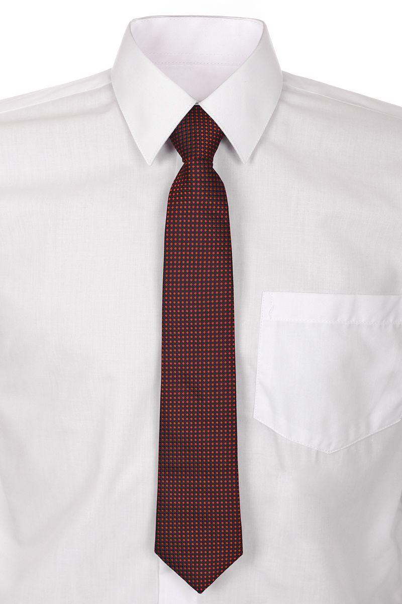 Галстук для мальчика Brostem, цвет: бордовый. RCAL-8. Размер универсальныйRCAL-8Модный галстук для мальчика Brostem изготовлен из полиэстера. Обхват шеи регулируется с помощью пластикового фиксатора. Галстук оформлен оригинальным принтом.