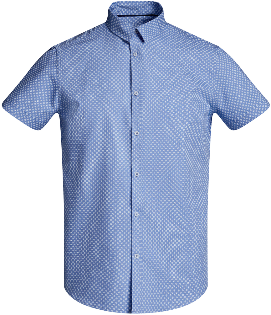 Рубашка мужская oodji Lab, цвет: голубой, белый. 3L410096M/46211N/7010G. Размер XL-182 (56-182)3L410096M/46211N/7010GМужская рубашка от oodji выполнена из натурального хлопка. Модель приталенного кроя с короткими рукавами застегивается на пуговицы, оформлена мелким принтом.