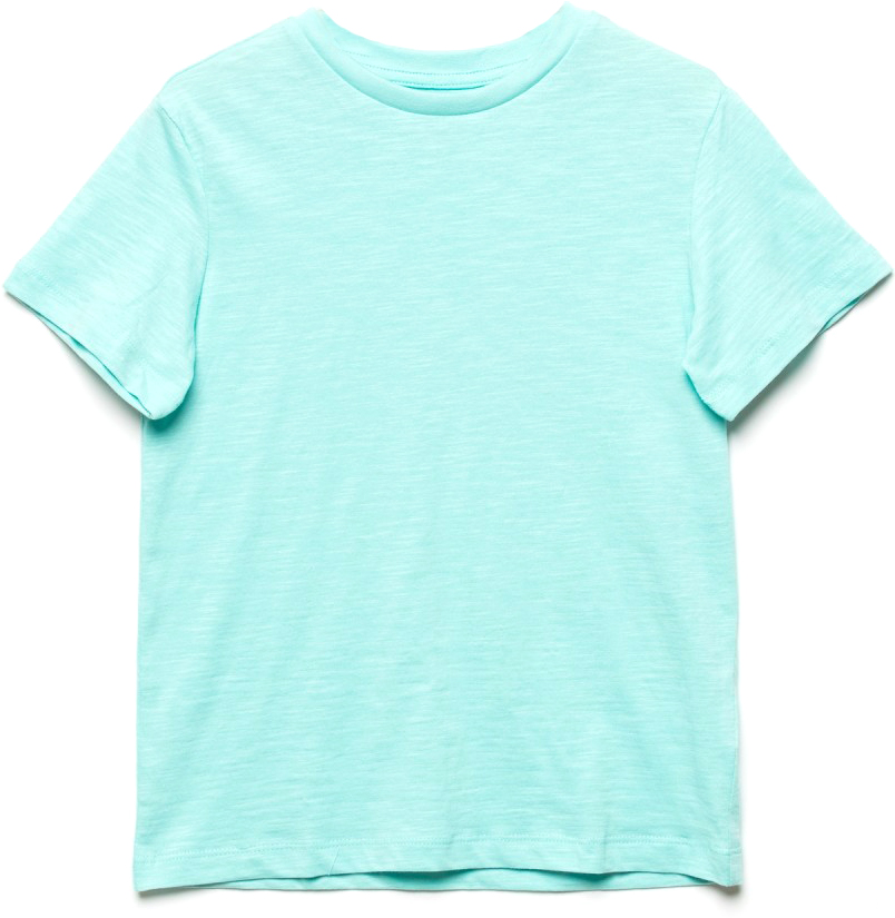 Футболка для мальчика Sela, цвет: голубой. Ts-811/608-7224. Размер 128, 8 летTs-811/608-7224Стильная футболка для мальчика Sela изготовлена из натурального хлопка однотонного цвета. Воротник дополнен мягкой трикотажной резинкой. Универсальная модель позволит создавать комбинации, как в повседневном, так и в спортивном стиле.