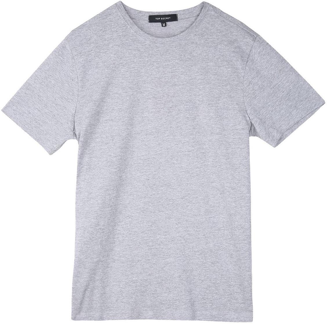 Футболка мужская Top Secret, цвет: серый. SPO3133SZ. Размер L (50)SPO3133SZФутболка мужская Top Secret выполнена из 100% хлопка. Модель с круглым вырезом горловины и короткими рукавами.