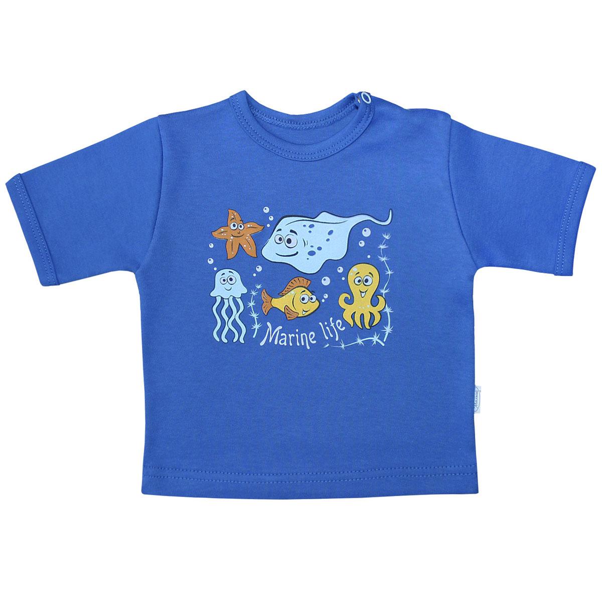 Футболка для мальчика Веселый малыш Морская жизнь, цвет: синий. 67322/мж-C (1). Размер 6867322Футболка для мальчика Веселый малыш Морская жизнь выполнена из качественного материала. Модель с круглым вырезом горловины и короткими рукавами.