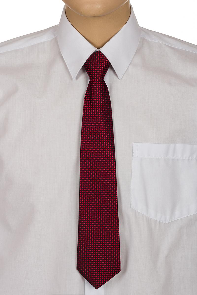 Галстук для мальчика Brostem, цвет: бордовый, черный. RKCAL08. Размер универсальныйRKCAL08Модный галстук для мальчика Brostem изготовлен из качественного полиэстера. Такой аксессуар придаст юному кавалеру солидности.