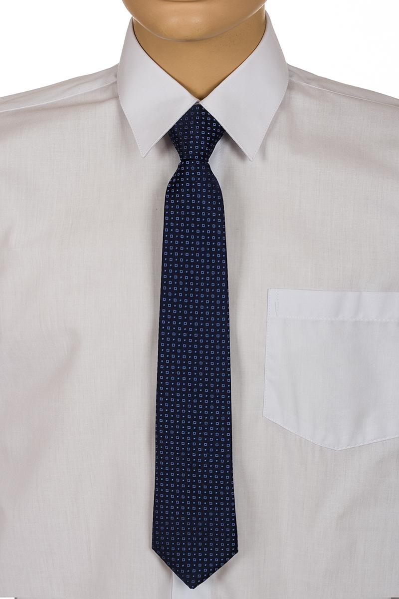 Галстук для мальчика Brostem, цвет: темно-синий, голубой. RKCAL0111. Размер универсальныйRKCAL0111Модный галстук для мальчика Brostem изготовлен из качественного полиэстера. Такой аксессуар придаст юному кавалеру солидности.