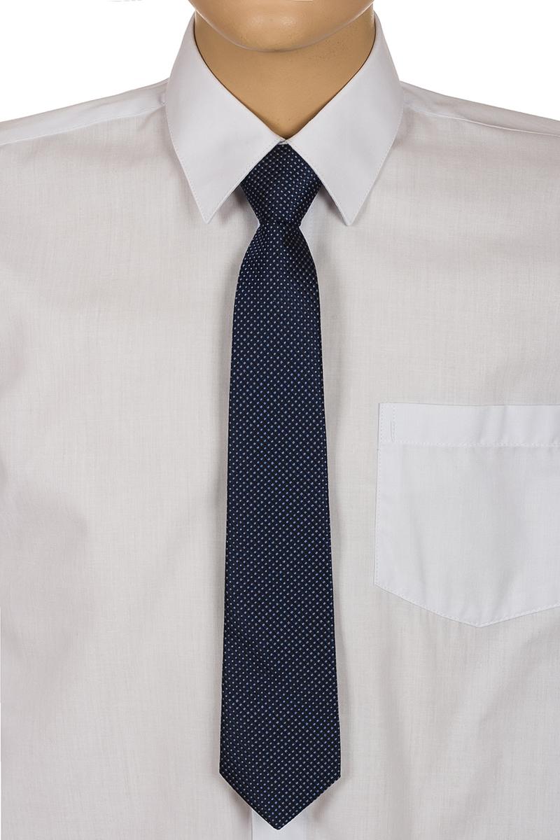 Галстук для мальчика Brostem, цвет: темно-синий, белый. RKCAL0129. Размер универсальныйRKCAL0129Модный галстук для мальчика Brostem изготовлен из качественного полиэстера. Такой аксессуар придаст юному кавалеру солидности.