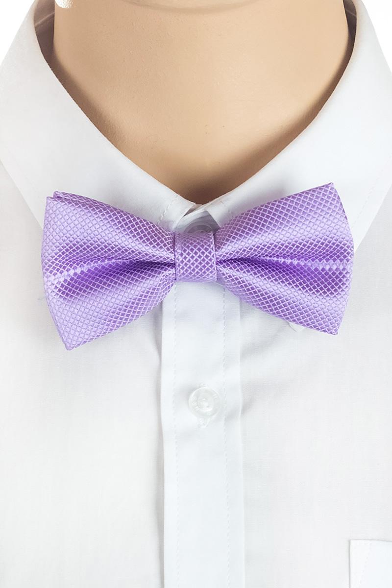 Галстук-бабочка для мальчика Brostem, цвет: сиреневый. RBAB53. Размер универсальныйRBAB53Модный галстук-бабочка для мальчика Brostem изготовлен из качественного полиэстера. Такой аксессуар придаст юному кавалеру солидности.